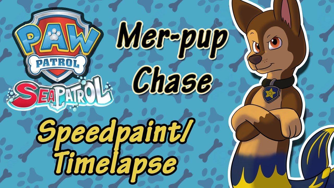 Paw Patrol Mer Pup Chase Speedpaint Timelapse Youtube