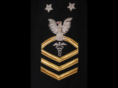 Navy Rating Badges