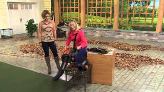 Worx TriVac High Capacity Dual Speed Blower,Vacuum & Mulcher with Kerstin Lindquist
