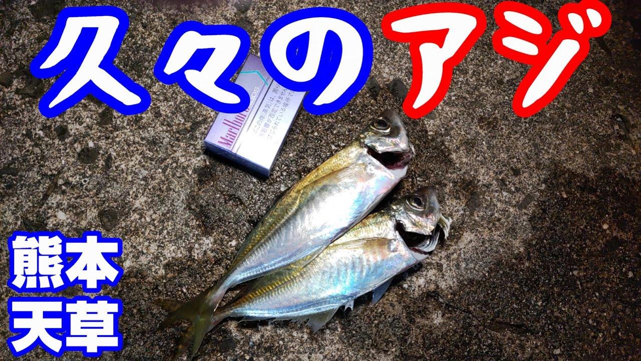 天草釣行・久しぶりのアジ【釣り】熊本