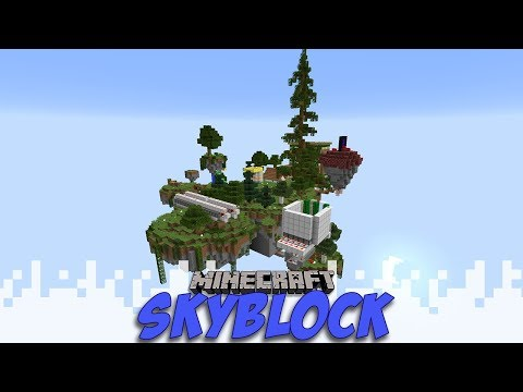 The End - Skyblock - EP27 (Minecraft Video)