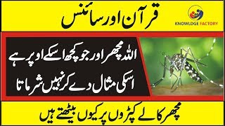 ( Quran and Science ) Miracle of Mosquito in Quran Urdu/Hindi