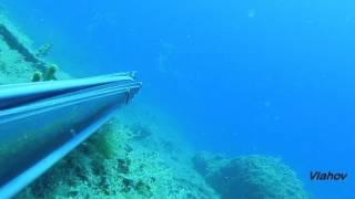 Spearfishing, Podvodni ribolov, Croatia,Dentex Dentex IX Skakavci, 2015  mp4