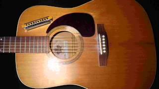 la guitare de dame marmotte