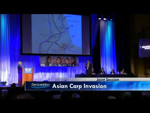 9/13  Asian Carp Invasion: What to Expect When You're Expecting