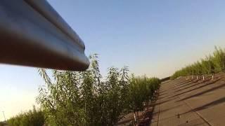 California Wingshooting: Upland Dove Hunt w/ GoPro & Fetch / Gun Mount