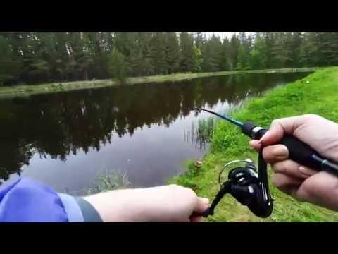 форель платная рыбалка в челябинской области