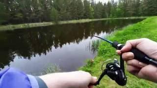 видео платная рыбалка