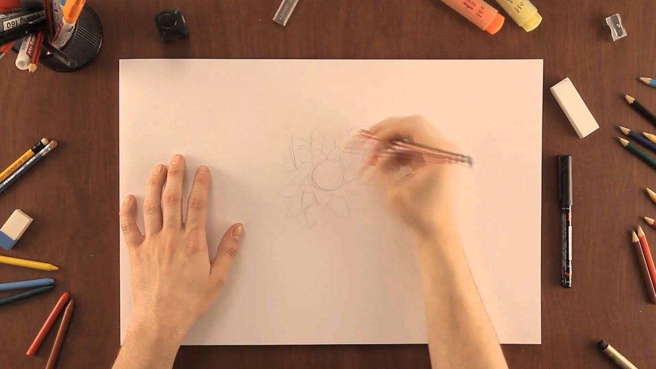 Cmo dibujar una flor de loto  Dibujos de la Naturaleza  YouTube