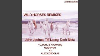 Wild Horses (Alex Kosoglaz Remix)