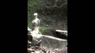 【探検】高知県安芸市の伊尾木洞に突撃してきた