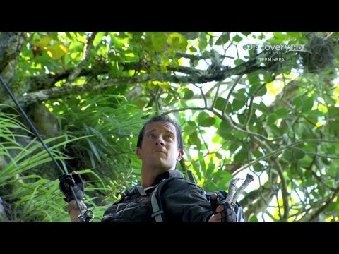 Bear Grylls Breaking Point | Season 1 Episode 3 | Rats and Spiders