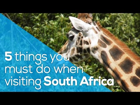 5 THINGS YOU MUST DO WHEN VISITING SOUTH AFRICA