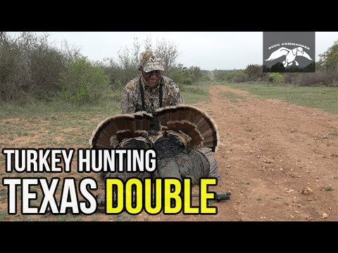 Texas Turkey Hunting - Four Birds Down!