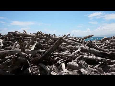 Land Is My Ohana - Waihe'e Refuge