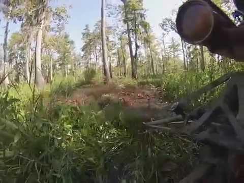 mud motor ride in Maurepas Swamp