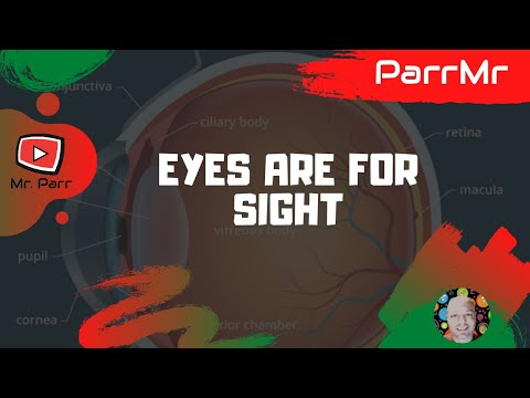 Eyes Are For Sight Song Youtube