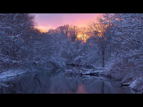 Nature: Snow in Rhode Island