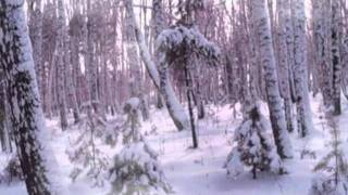 Зимняя сказка.mpg