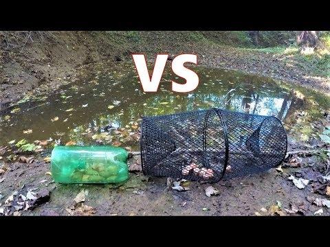 Homemade VS Walmart MINNOW TRAP (which Catches More?)