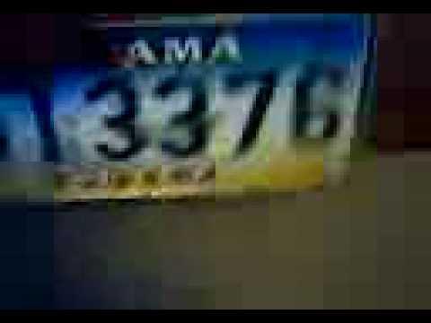 License Plates 4