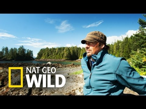 Kierunek Wild: Dzika Ameryka