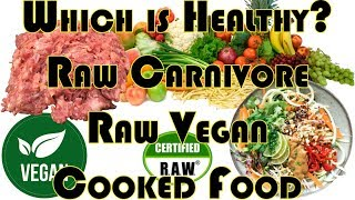 Raw Carnivore / Raw Vegan / Cooked Food / Fruit / Diets: Are They Healthy?