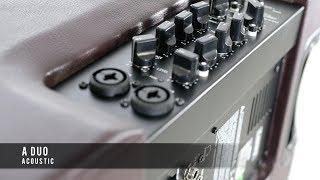 Laney A-Duo Acoustic Amplifier Demo