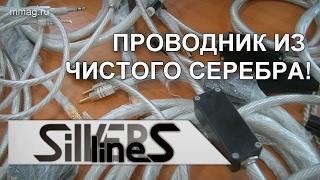 Silverlines - проводник из чистого серебра (Арт-Аура фестиваль)