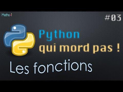 #3. Les fonctions (Python Lycée/Bac+1)