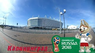 Болельщики Калининград Mundial Rusia 2018