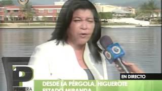 Desarticulan 4 bandas delictivas en municipio Brion de Miranda
