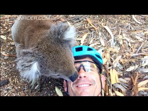 Training For The Hardest Bicycle Race On The Planet // Indian Pacific Wheel Race