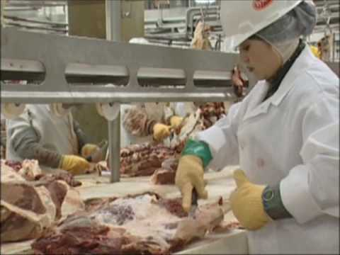 Tyson Foods/ UFCW Ergonomics Improvement.wmv