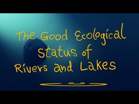 The good ecological status of rivers and lakes