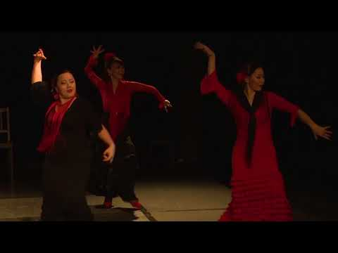 5th Summer DanceFit Festival - Flamenco Extravaganza