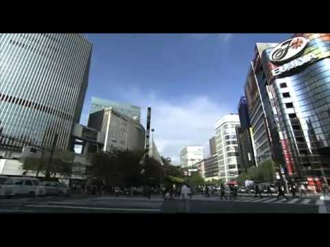 Sightseeing Guide (TOKYO AREA)