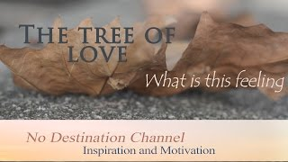 The tree of love - What is this feeling?
