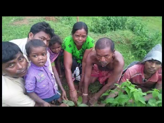 11 years in Jharkhand - Thimbu Uraon