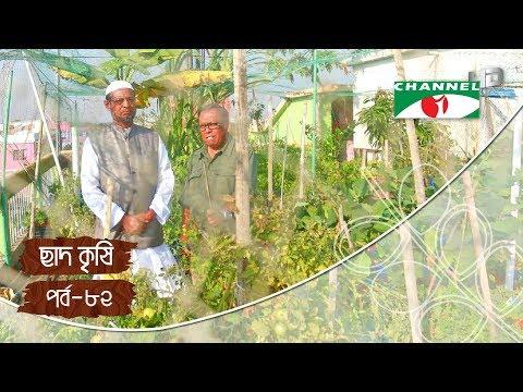 Rooftop farming   EPISODE 82   HD   Shykh Seraj   Channel i   Roof Gardening   ছাদকৃষি  