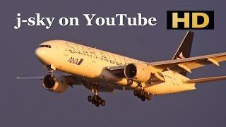 [HD] Sunset Landing at Haneda Airport - JAL, ANA, Skymark, Star Flyer, Solaseed Air / 羽田空港