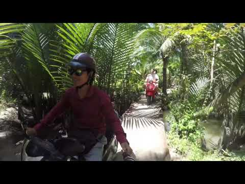 The coconut kingdom in Mekong Delta (Tho's Private Tours)