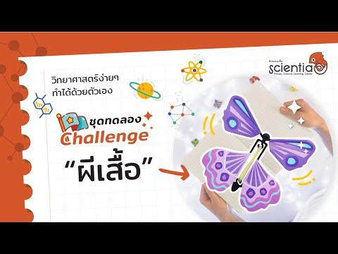 Flying Butterfly ผีเสื้อโบยบิน ชุดทดลอง วิทยาศาสตร์ จากชุดการเรียนรู้แบบลงมือทำ Challenge l Scientia