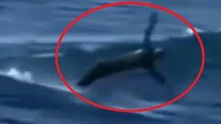 5 Người Cá Xuất Hiện Ngoài Đời Thật Được Camera Quay Lại #2 || 5 Mermaids Caught On Camera #2