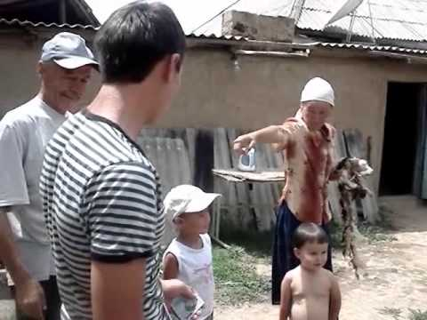 One day from a village life in Kyrgyzstan. (part 2)