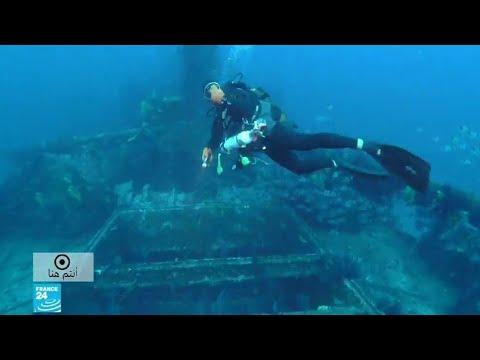 الحطام في البحر.. ملجأ كل من يهوى الحياة البحرية  - نشر قبل 1 ساعة