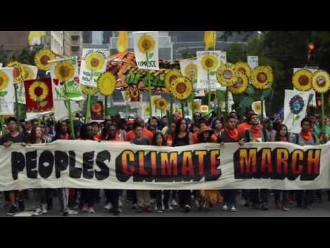 Earth Guardians NY Productivity & Outreach