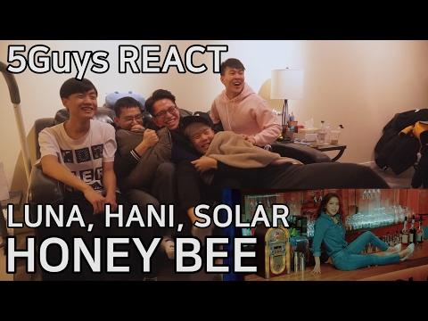 Free Download [fanboys React] 루나, 하니, 솔라 Luna, Hani, Solar - Honey Bee (5guys) Mp3 dan Mp4