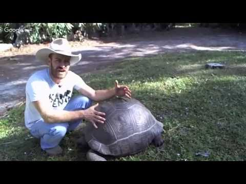 Nostradamus the Aldabra Tort Live!!!