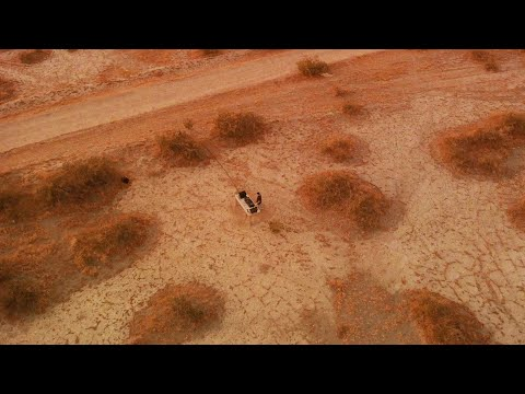 BOOMBOX CARTEL - LOLLAPALOOZA 2020 LIVESTREAM [FULL SET]